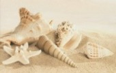Gracia Ceramica Amalfi sand decor 01